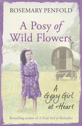 A Posy of Wild Flowers: A Gypsy Girl at Heart (Paperback)