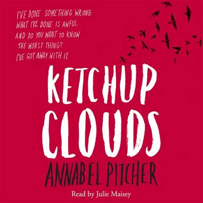 Cover of the book, Ketchup Clouds.