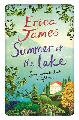 Summer at the Lake (Hardback)