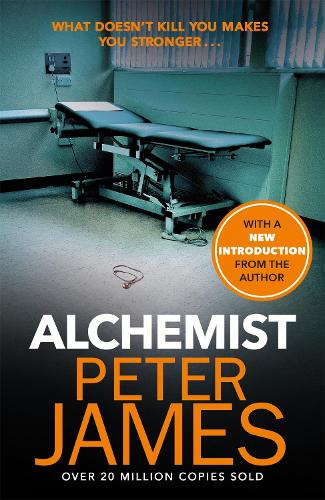 Alchemist (Paperback)