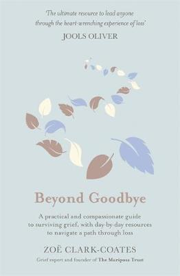 Beyond Goodbye: A practical and compassionate guide to surviving grief, with day-by-day resources to navigate a path through loss (Hardback)