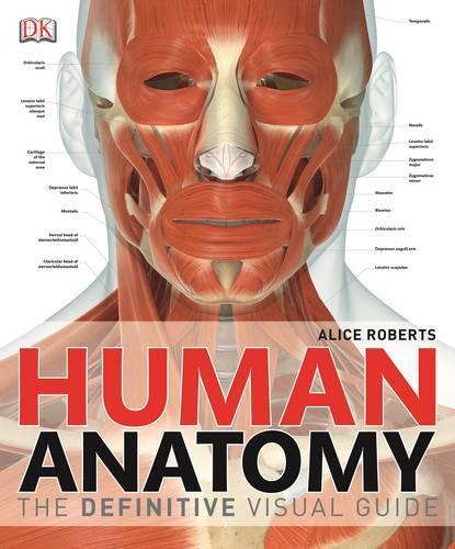Human Anatomy: The Definitive Visual Guide (Hardback)