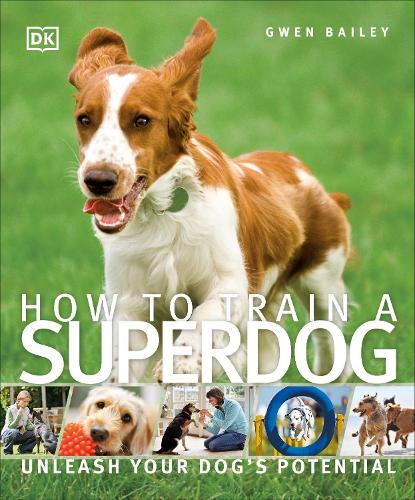 How To Train A Superdog: Unleash Your Dog's Potential (Paperback)