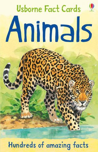 Hundreds of Animal Facts - Facts and Lists (Paperback)