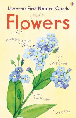 Flowers Usborne Nature Cards - Spotter's Cards