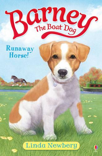 Barney the Boat Dog Runaway Horse! (Paperback)
