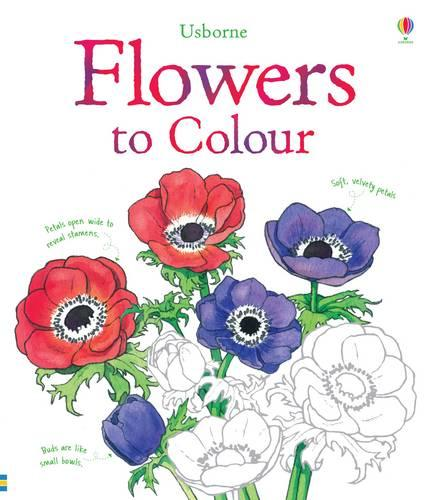 Flowers Colouring Book - Nature Colouring Books (Paperback)