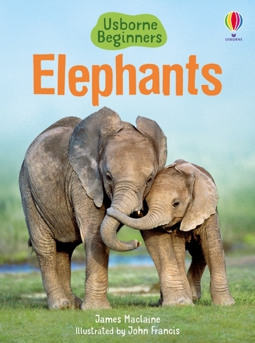 Elephants - Beginners Series (Hardback)