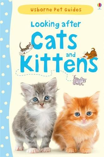 Looking After Cats and Kittens (Hardback)