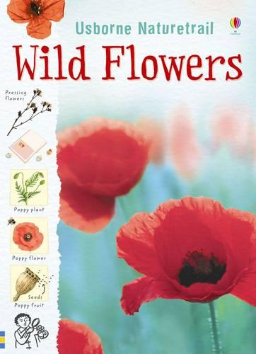 Nature Trail Wild Flowers - Nature Trail (Paperback)