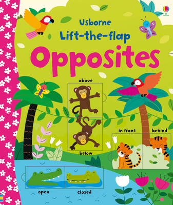 Lift-the-flap Opposites - Lift the Flap (Board book)