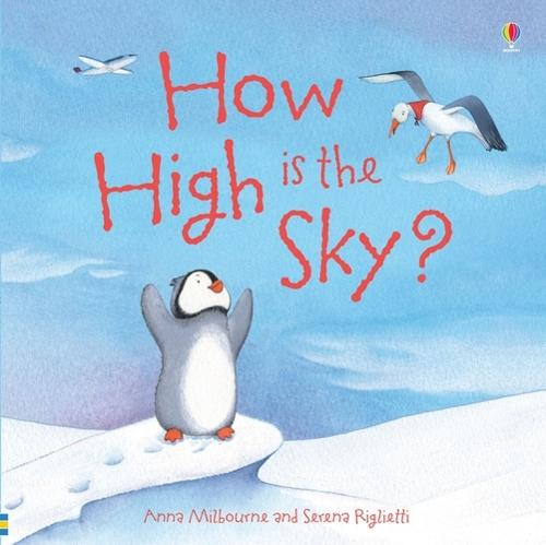 How High is the Sky? - Picture Poster Books (Paperback)