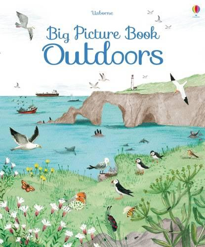 Big Picture Book Outdoors - Big Picture Books (Hardback)