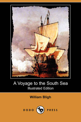 A Voyage to the South Sea (Illustrated Edition) (Dodo Press) (Paperback)