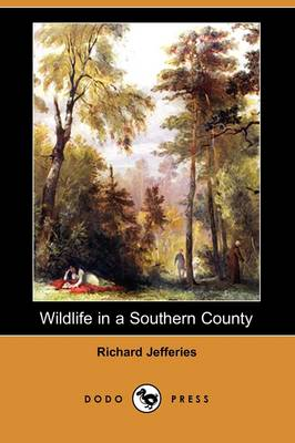 Wildlife in a Southern County (Dodo Press) (Paperback)