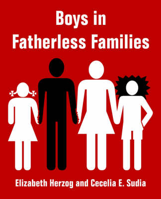 Boys in Fatherless Families (Paperback)
