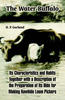The Water Buffalo: Its Characteristics and Habits Together with a Description of the Preparation of Its Hide for Making Rawhide Loom Pickers (Paperback)