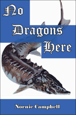 No Dragons Here (Paperback)