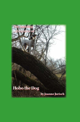 The Amazing Adventures of Hobo the Dog (Paperback)