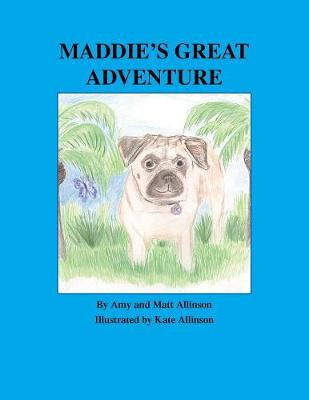 Maddie's Great Adventure (Paperback)