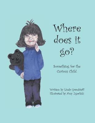 Where Does it Go?: Something for the Curious Child (Paperback)