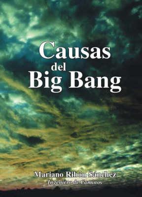 Causas Del Big Bang (Paperback)