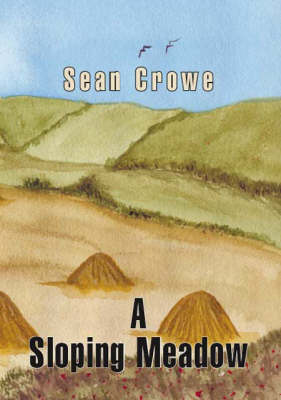 A Sloping Meadow (Paperback)