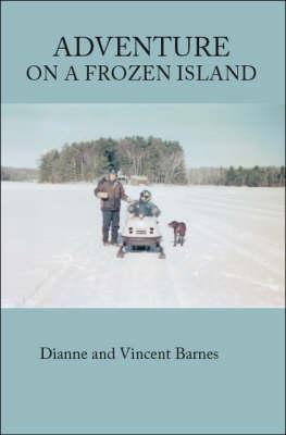 Adventure on a Frozen Island (Paperback)