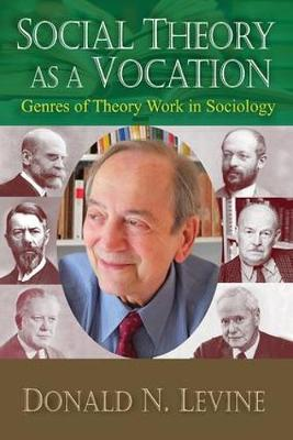 Social Theory as a Vocation: Genres of Theory Work in Sociology (Hardback)
