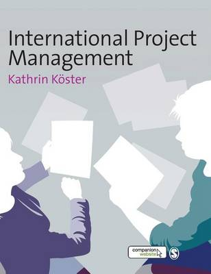International Project Management (Hardback)