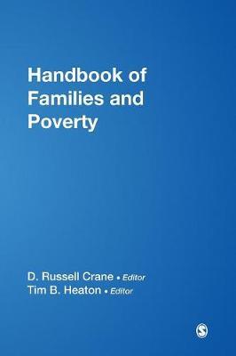 Handbook of Families and Poverty (Hardback)