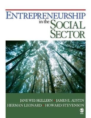 Entrepreneurship in the Social Sector (Hardback)