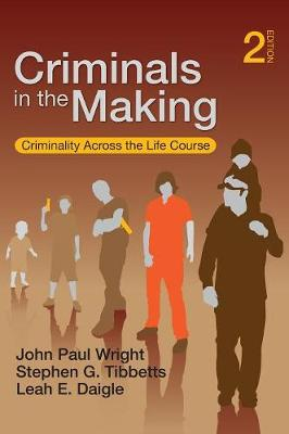 Criminals in the Making: Criminality Across the Life Course (Hardback)