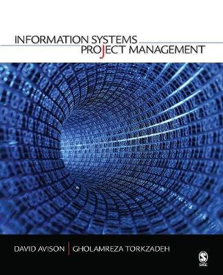 Information Systems Project Management (Paperback)