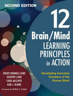 12 Brain/Mind Learning Principles in Action: Developing Executive Functions of the Human Brain (Paperback)