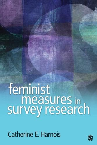 Feminist Measures in Survey Research (Paperback)