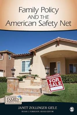 Family Policy and the American Safety Net - Contemporary Family Perspectives (CFP) (Paperback)