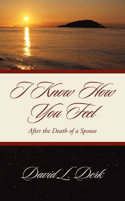 I Know How You Feel (Paperback)