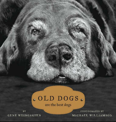 Old Dogs: Are the Best Dogs (Hardback)
