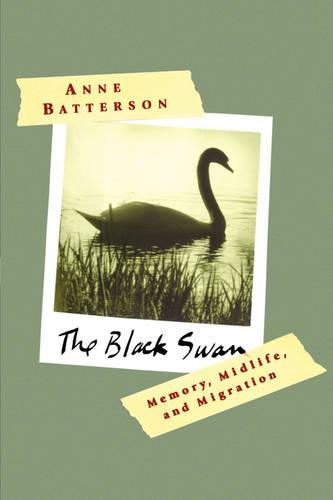 The Black Swan: Memory, Midlife, and Migration (Paperback)