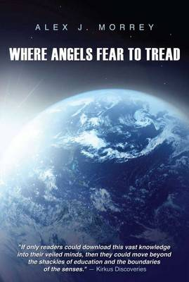 Where Angels Fear to Tread: The Nature of Reality and Meaning of God (Paperback)