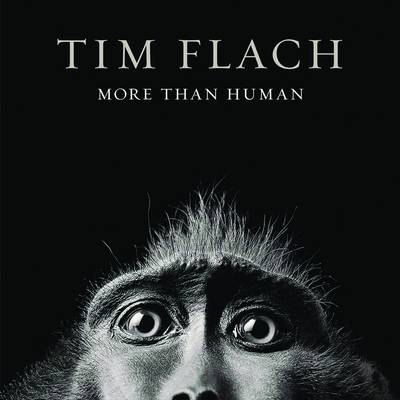 More Than Human (Hardback)