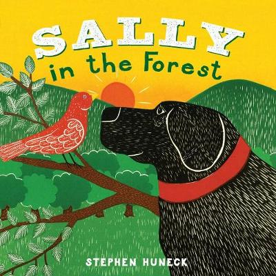 Sally in the Forest (Board book)