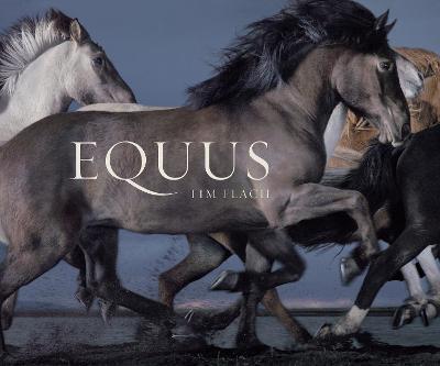 Equus (Mini) (Hardback)