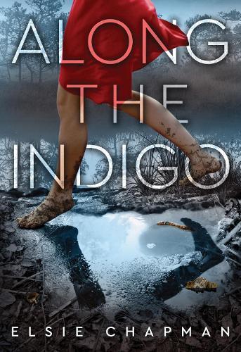 Along the Indigo (Hardback)