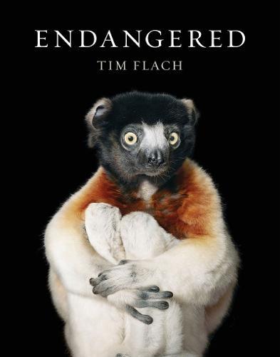 Endangered (Hardback)