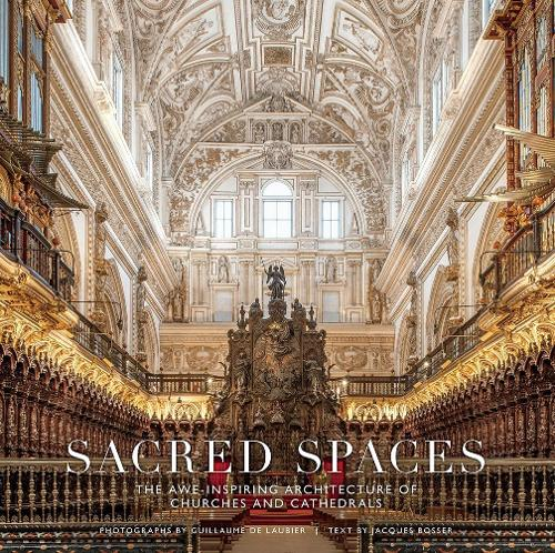 Sacred Spaces: The Awe-Inspiring Architecture of Churches and Cat (Hardback)