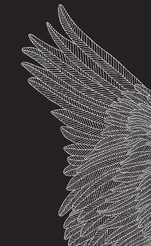 Brave Birds Journal (Hardcover)