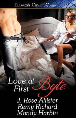 Love at First Byte (Paperback)