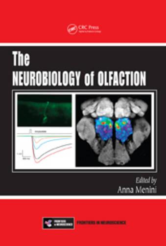 The Neurobiology of Olfaction - Frontiers in Neuroscience (Hardback)